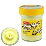 Паста форелевая Berkley PowerBait Natural Scent, Garlic/Gltr